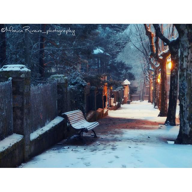 nevada monica 1
