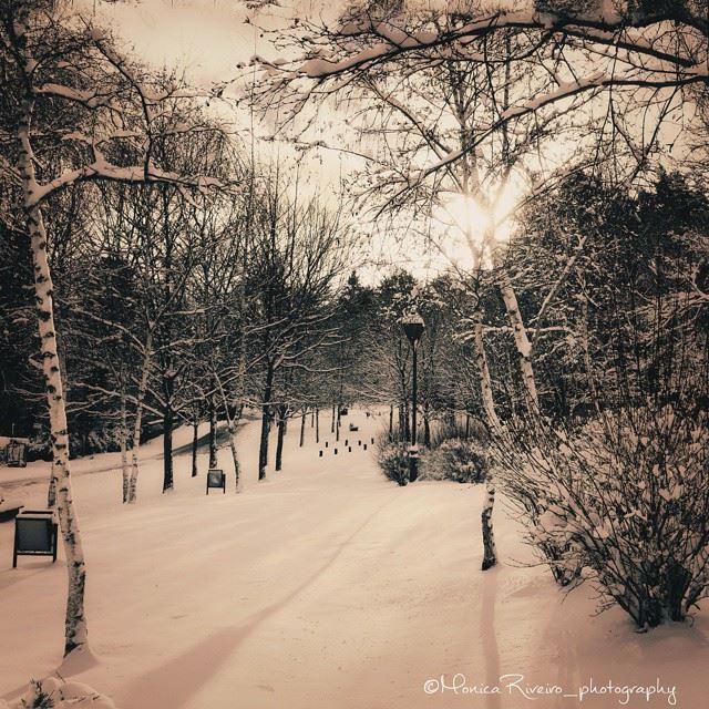 nevada monica 2